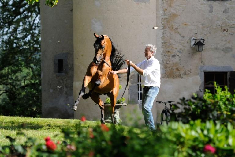 https://www.redwoodlodgearabians.com/core/image.php?src=app/media/uploads/website/30/photos/website_horses/2195/Abha_Omani_EYE3772web.jpg&width=768&height=512
